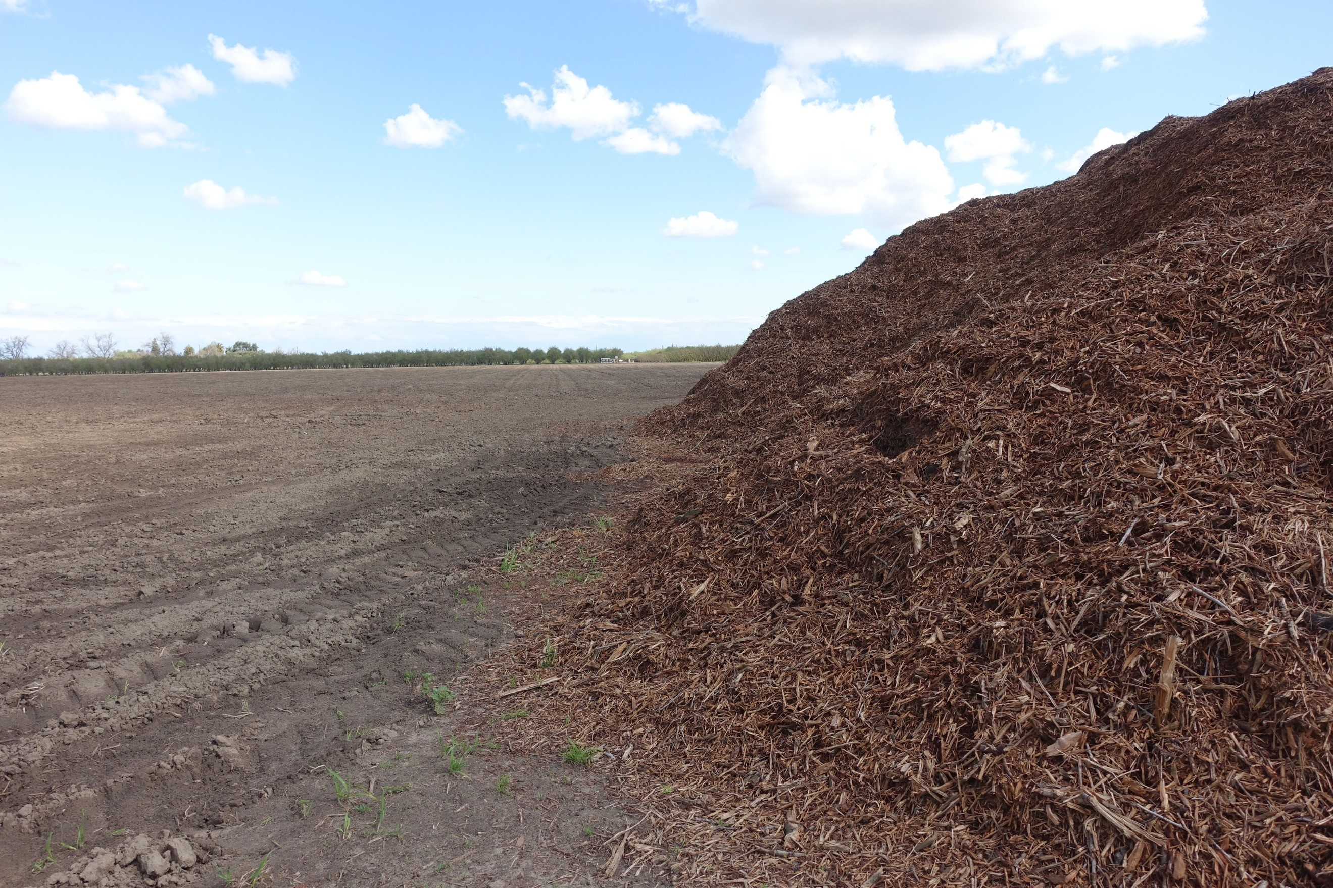 Pile of chips from a 35-acre block